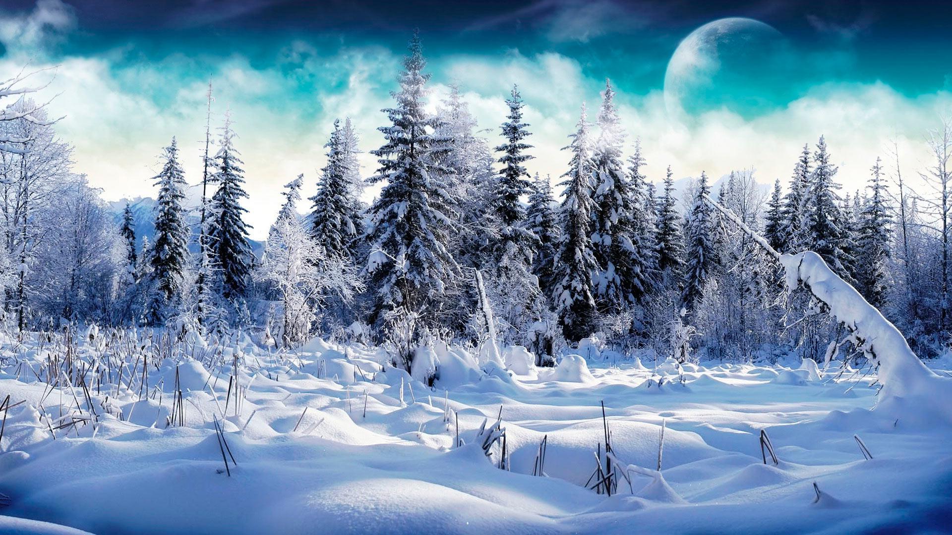 призвал картинки для рабочего стола зимние пейзажи самого рождения