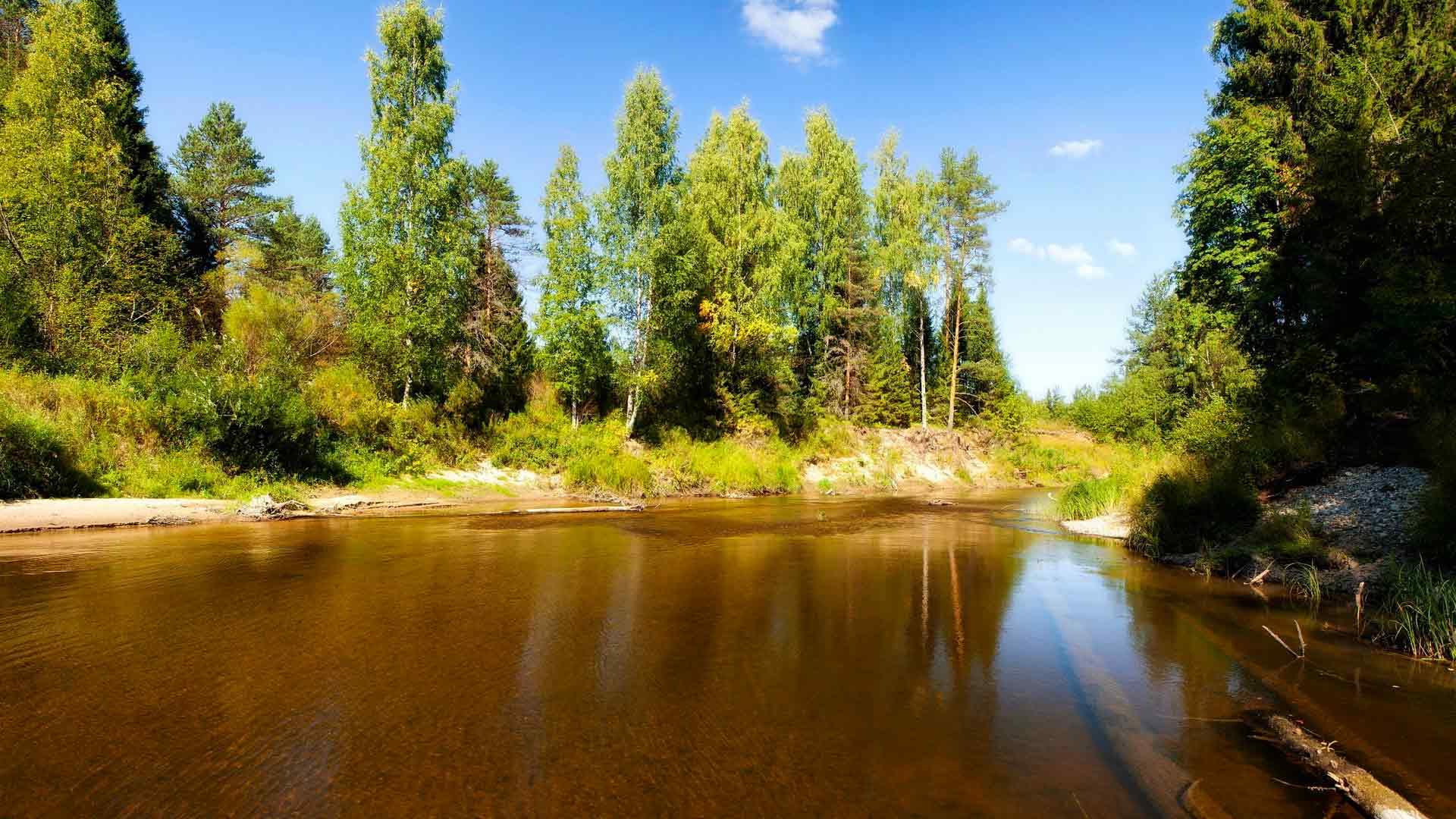 все реки с песчаными берегами фото красивых рек результате совместного