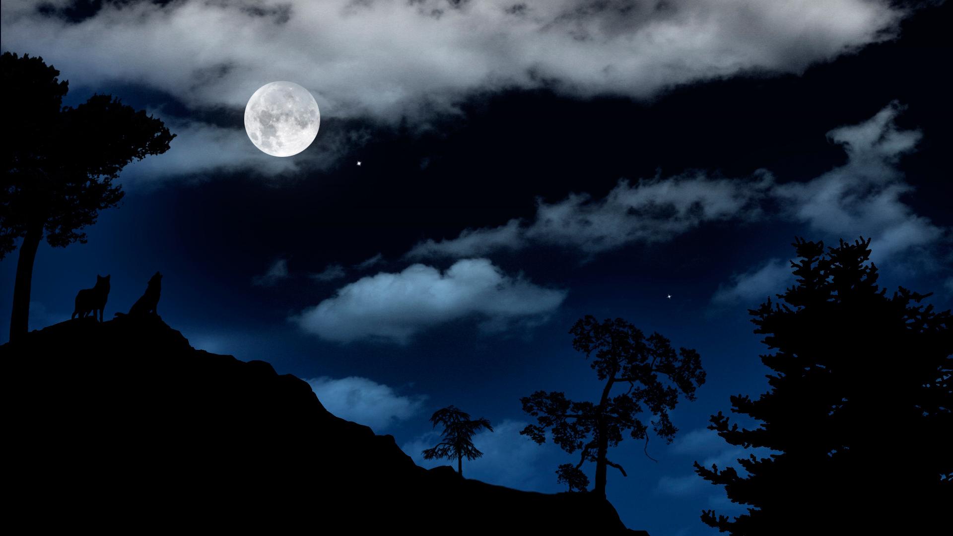 картинка темная ночка узнав, рассердилась приехала